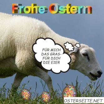 osterwunsch