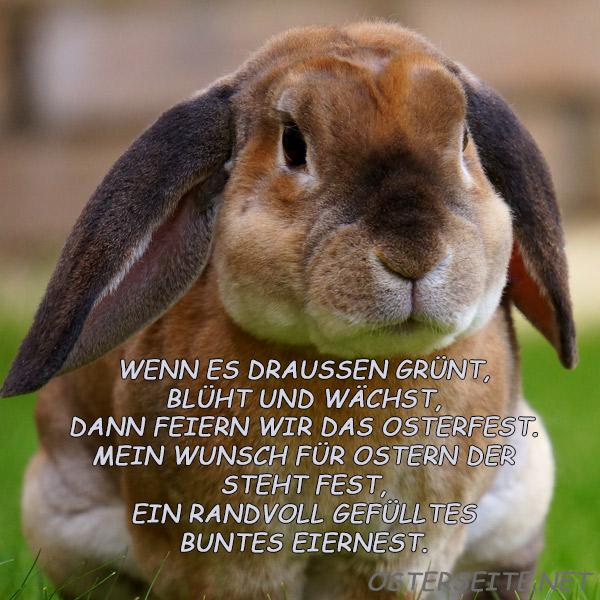 Sms ostergrüße Glückwünsche Ostern